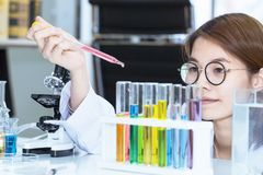 Young female scientist student mixing substances in test tube. Copy space Royalty Free Stock Photo