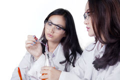 Young female scientists doing research Royalty Free Stock Photography