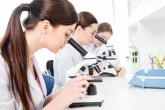Young female scientists royalty free stock photography