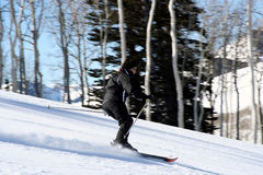 Young Female Skiier. Downhill skiing Stock Image