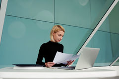 Young female skilled entrepreneur reads resume for recruitment of new workers Royalty Free Stock Image