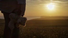Young female stands watching the sunset whilst holding a teddy bear Royalty Free Stock Photo