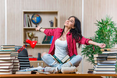 The young female student preparing for college school exams Royalty Free Stock Photo