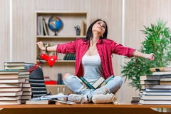 The young female student preparing for college school exams Royalty Free Stock Image