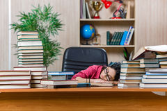 The young female student preparing for college school exams Stock Photo