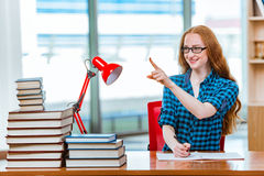 The young female student preparing for exams. Young female student preparing for exams Royalty Free Stock Photos