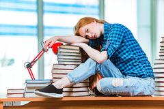 The young female student preparing for exams Stock Image