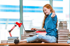 The young female student preparing for exams Royalty Free Stock Photography