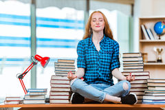The young female student preparing for exams. Young female student preparing for exams Royalty Free Stock Image
