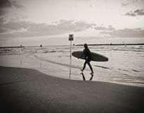 Young female surfer with board walking on the beach, reflected on water, under a cloudy sky. Young female surfer with surfboard in her hand, walking along on the stock photography