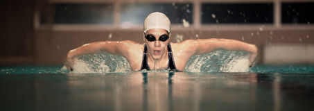 Young female swimmer Stock Photography