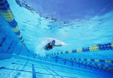 Young female swimmer in competition Royalty Free Stock Image