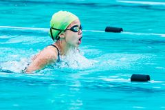 Young female swimmer races in breath stroke and raises up to cat Stock Image