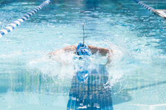 Young Female Swimming Butterfly royalty free stock image