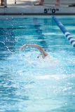 Young Female Swimming Freestyle Royalty Free Stock Images