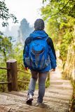 Young female tourist with blue backpack descending stairs. Among green foliage and enjoying beautiful mountain view in the Zhangjiajie National Forest Park stock photography