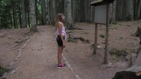 Young Female Tourist Reads An Information Stand In Black Pine Forest 4K. Side view. Energetic young woman in a t-shirt shorts and sneakers. Stands on a walking stock video footage