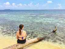 A young female tourist sitting on a log on the secluded remote tropical island of Laughing bird caye. Off the coast of Belize royalty free stock photos