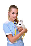 Young female veterinarian doctor carrying a rabbit Stock Image