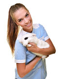 Young female veterinarian doctor carrying a rabbit. At medical clinic stock photos
