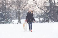 Young female walking on snowy day wit her japanese akita pet. Wi. Young female walking on snowy day wit her japanese akita pet royalty free stock photography