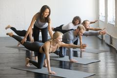 Young female yoga instructor teaching Bird dog pose. Knee to Forehead curl exercise for a group of sporty people practicing in studio, working out indoor royalty free stock image