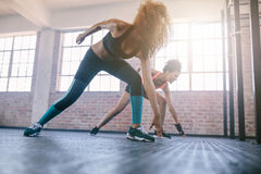 Young females running in the gym. Shot of young females running in the gym. Women doing fitness workout in healthclub Stock Photography