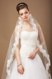 Young Fiancee in Veil with Openwork Lace Stock Photos