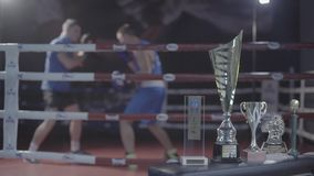 Young fighter attractive male boxer athlete training workout practicing punch hook kick with personal coach boxing ring. Young attractive fighter male boxer stock footage