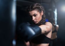 Young fighter boxer girl in training with heavy punching bag Royalty Free Stock Image