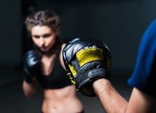 Young fighter boxer fit girl wearing boxing gloves in training Royalty Free Stock Images