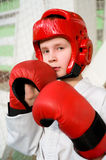 Young fighter boy stock photos