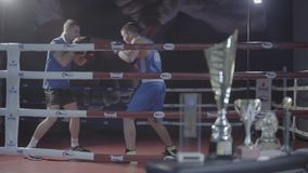 Young fighter male boxer attractive athlete training workout practicing punch hook kick with personal coach boxing ring. Young attractive fighter male boxer stock footage