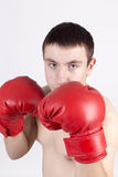 Young fighter Royalty Free Stock Image