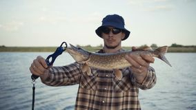 Young fisherman actively fishing at lake. Man demonstrates the caught pike. Footage 4k stock footage