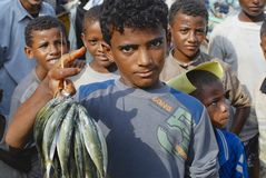 Young fishermen demonstrate catch of the day, Al Hudaydah, Yemen. Stock Photo