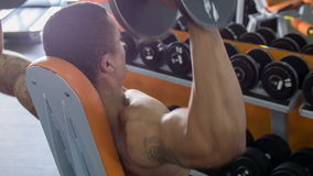 Young fit athlete is exercising in gym. Attractive sportsman is sitting and lifting two dumbbells in both his hands. Focus on his back stock footage