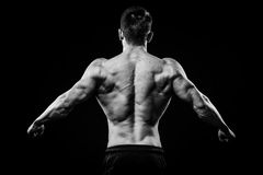 Young and fit bodybuilder athlete demonstrates biceps back view isolated on black background Stock Image