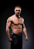 Young and fit bodybuildrer model on a dark background Stock Photography