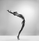 Young and fit male ballet dancer in a studio Stock Photography