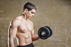 Young fit man posing on dirty wall background Royalty Free Stock Image