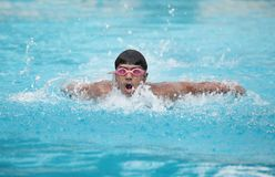 A young fit swimmer swimming Royalty Free Stock Image