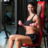 Young fit woman Royalty Free Stock Image