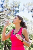 Young fit woman drinking water Stock Photo