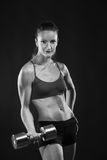 Young fit woman lifting dumbell Stock Images