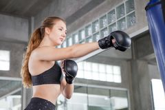 Young fitness girl doing exercise hitting punching bag at a boxing studio gym.woman boxer in sportswear working out with gloves royalty free stock photos