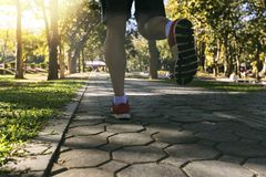 Young fitness man runner running on road in park. Royalty Free Stock Photos
