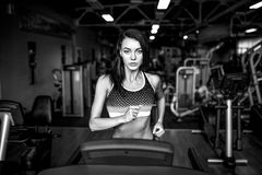Young fitness woman doing cardio exercises at the gym running on a treadmill. Royalty Free Stock Photography