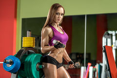 Young fitness woman execute exercise with dumbbells in gym Stock Photography