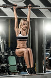 Young fitness woman royalty free stock image
